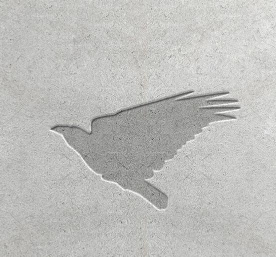 לוגו, ברחבי ישראל